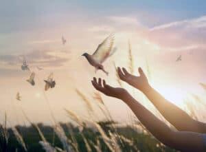 Transforming Emotional and Spiritual Standards - Episode 9